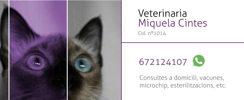 Veterinaria Miquela Cintes